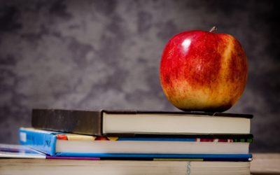 Dlaczego polska szkoła nie wystarczy, żeby dziecko opanowało język mniejszościowy?