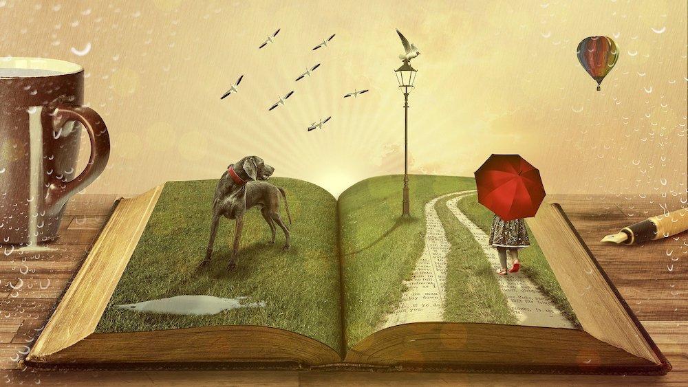 Polskie książki dla dzieci – prezent na jesienne dni
